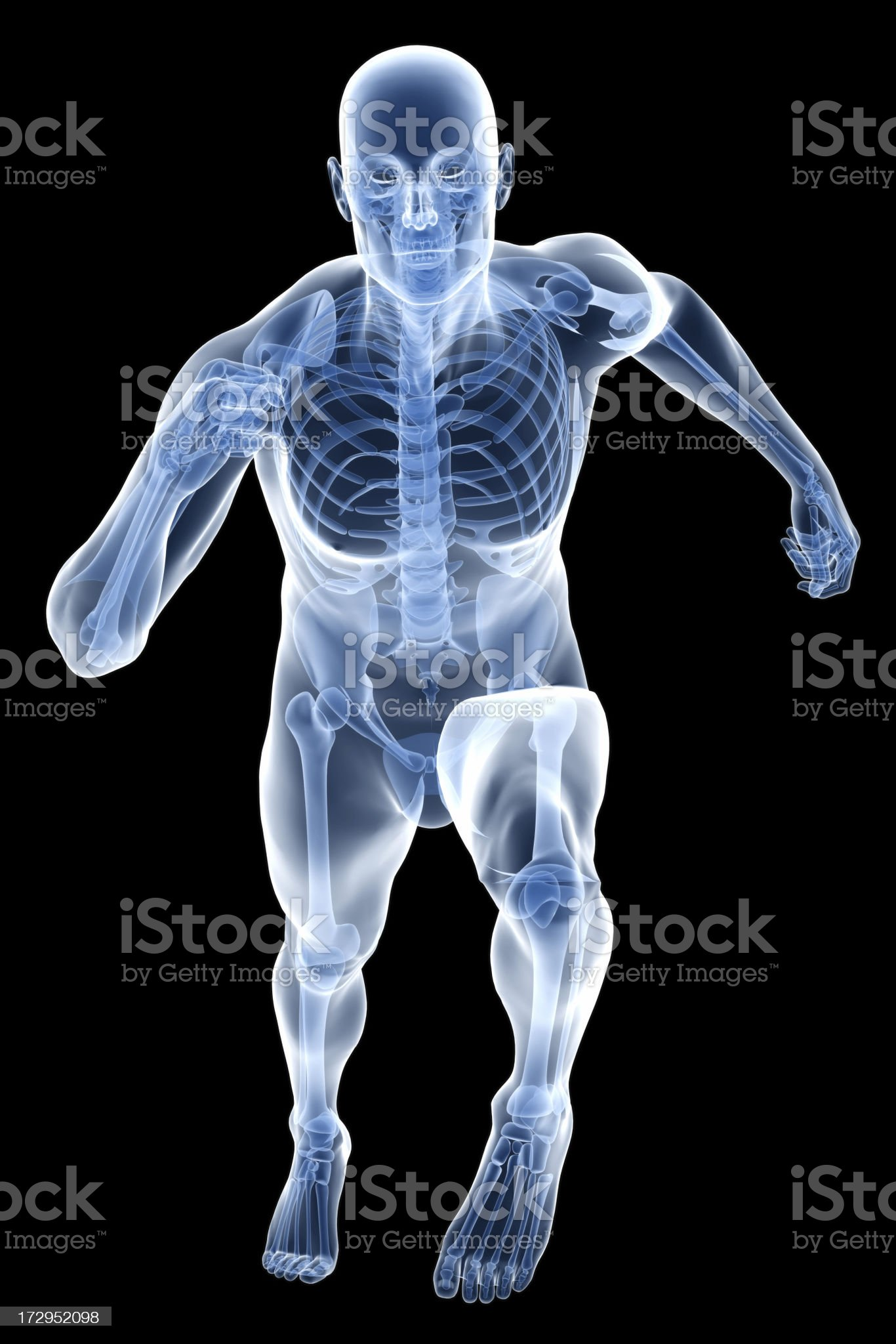 X-ray human body of a man with skeleton running royalty-free stock photo