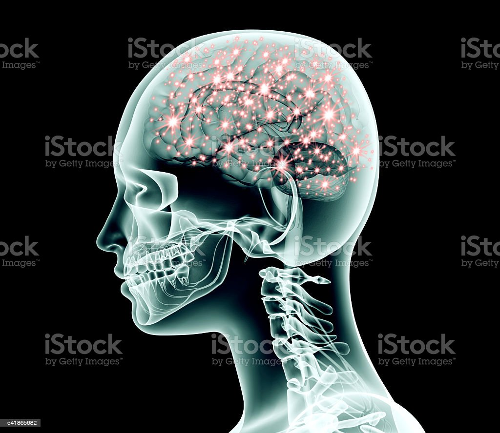 xray image of human head with brain and electric pulses stock photo