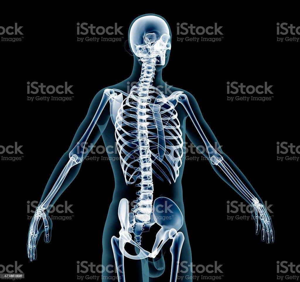 x-ray man stock photo