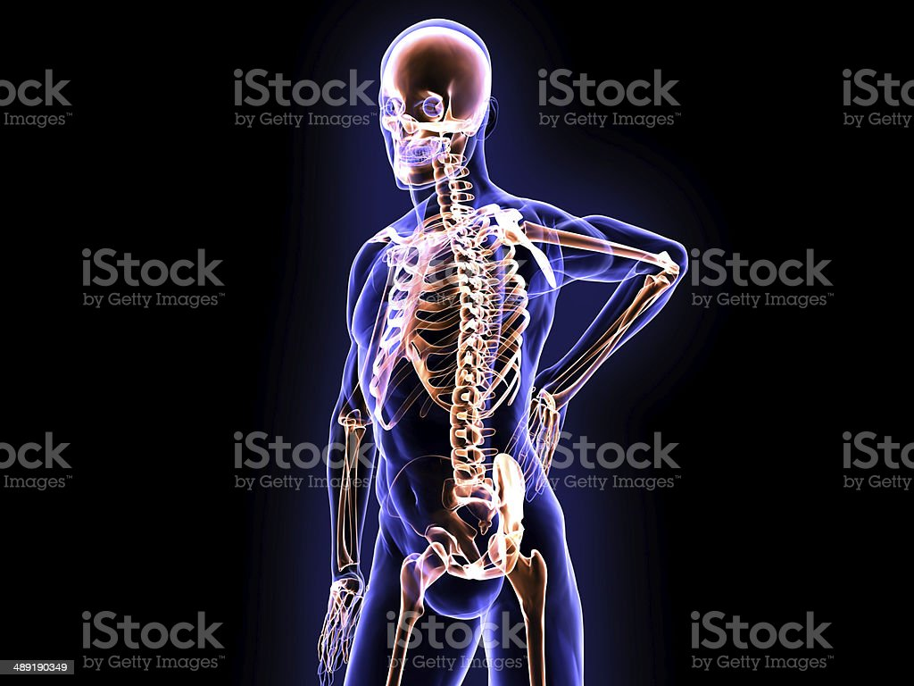 X-Ray Spinal Pain and Skeleton System stock photo
