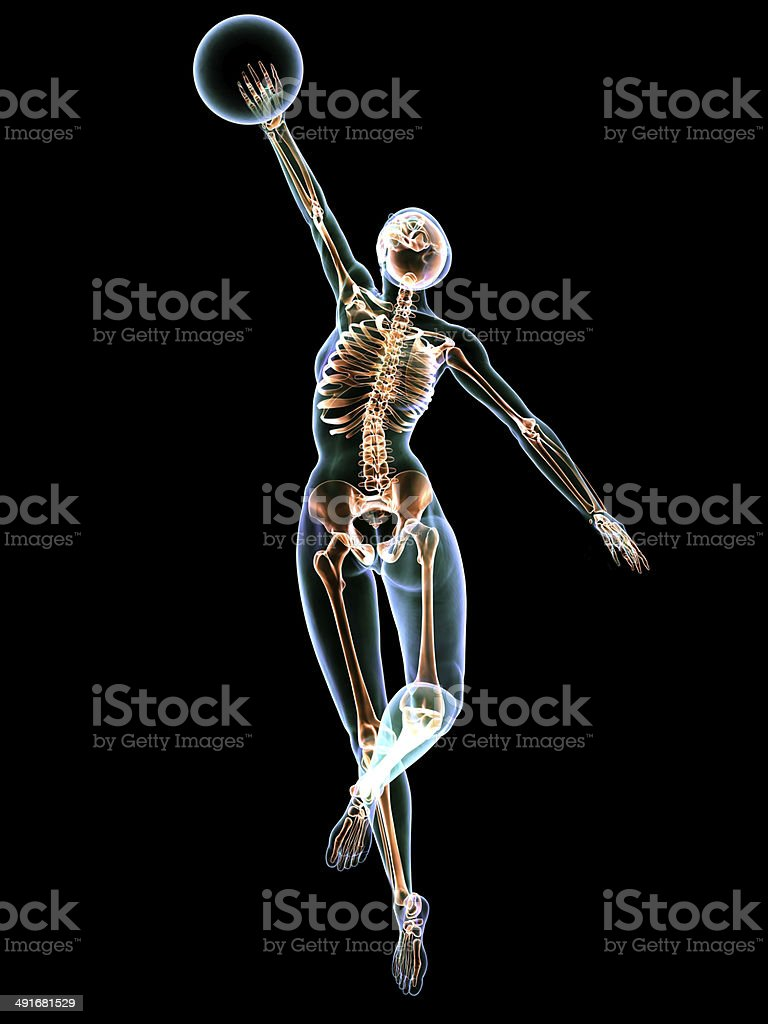 X-Ray Volleyball stock photo
