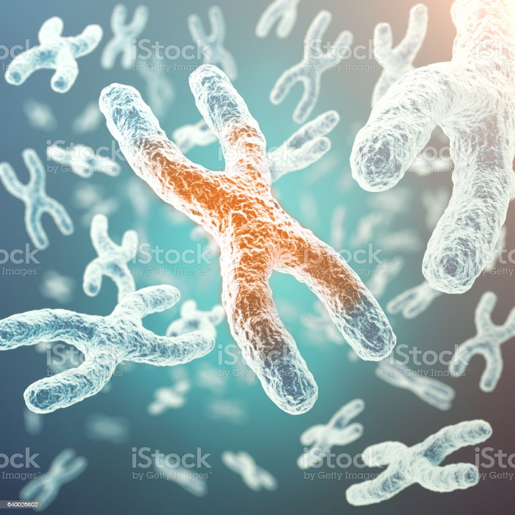 XY-chromosome, red in the center, concept of infection, mutation stock photo