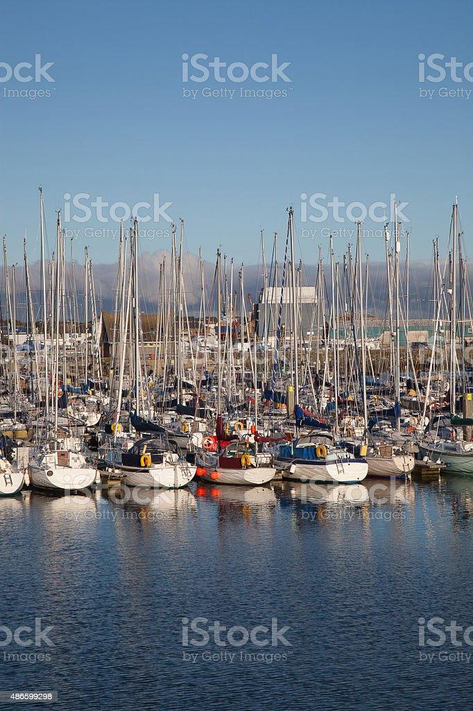 Yachts at the marina stock photo