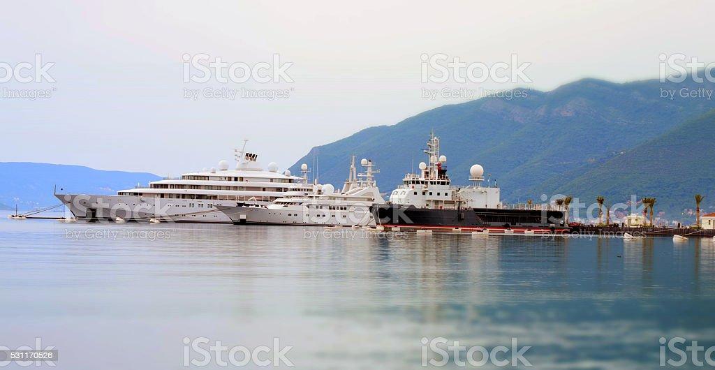 yachts in the marina stock photo