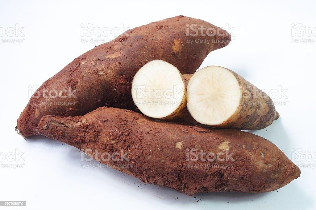 Yacon roots on white background stock photo