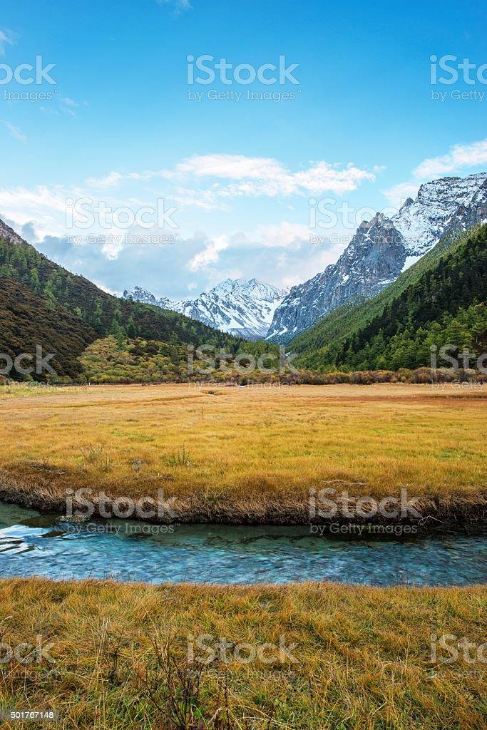 Yading Nature Reserve stock photo