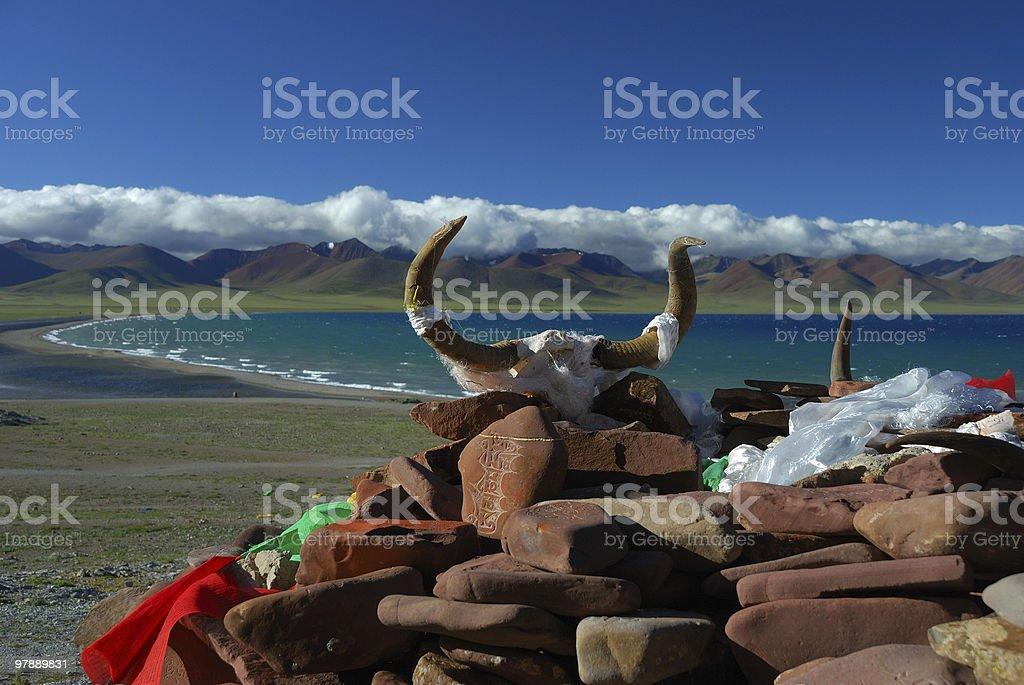 Yak skull and Mani stones at Namtso lake stock photo