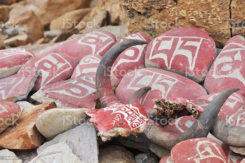 Yak skulls with Buddhist mantras in Tibet royalty-free stock photo