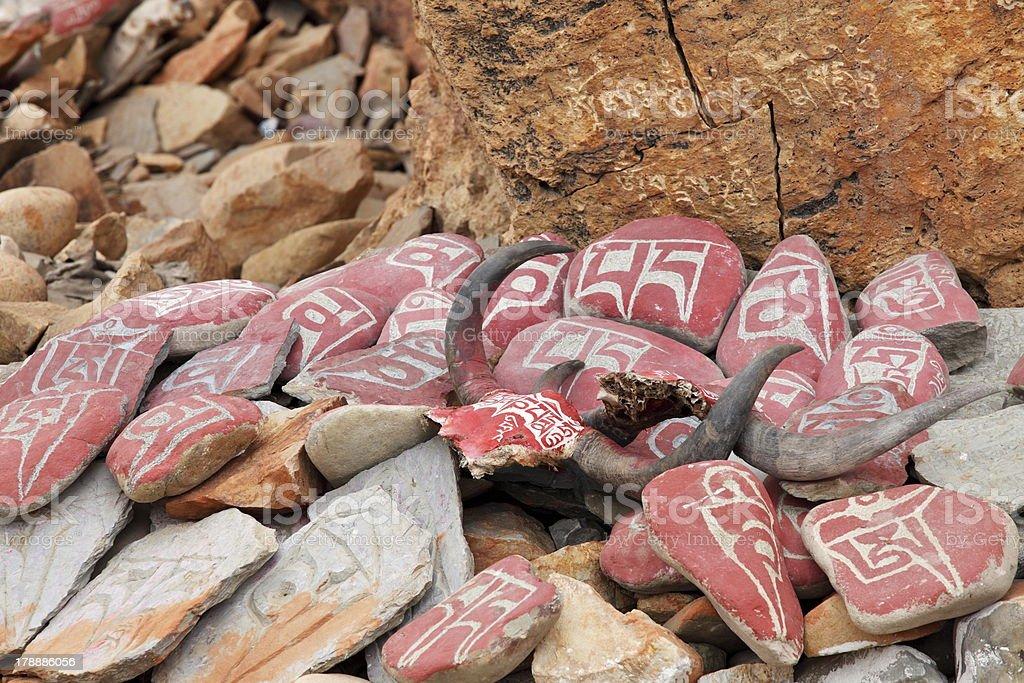 Yak skulls with Buddhist mantras in Tibet royalty-free stock photo