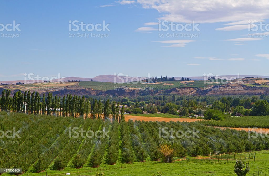 Yakima farming stock photo