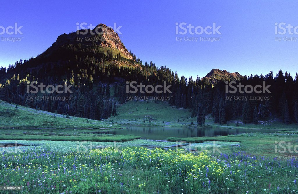 Yakima Peak stock photo
