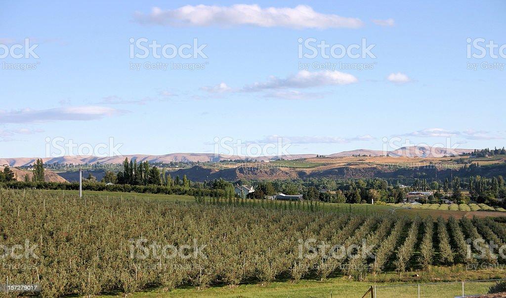 Yakima Valley royalty-free stock photo