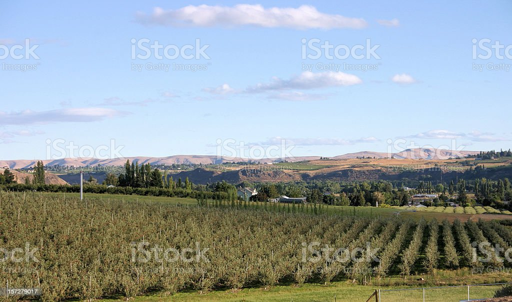 Yakima Valley stock photo