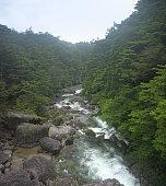 Yakushima mountain river