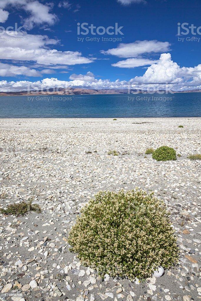 Yamdrok Tso (Lake) royalty-free stock photo