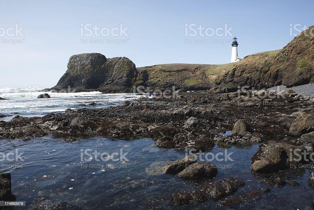 yaquina head lighthouse royalty-free stock photo