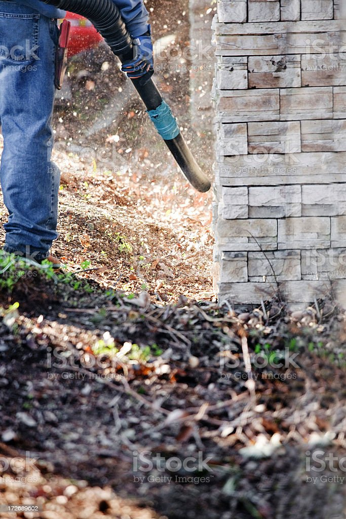 Yard Cleaning stock photo