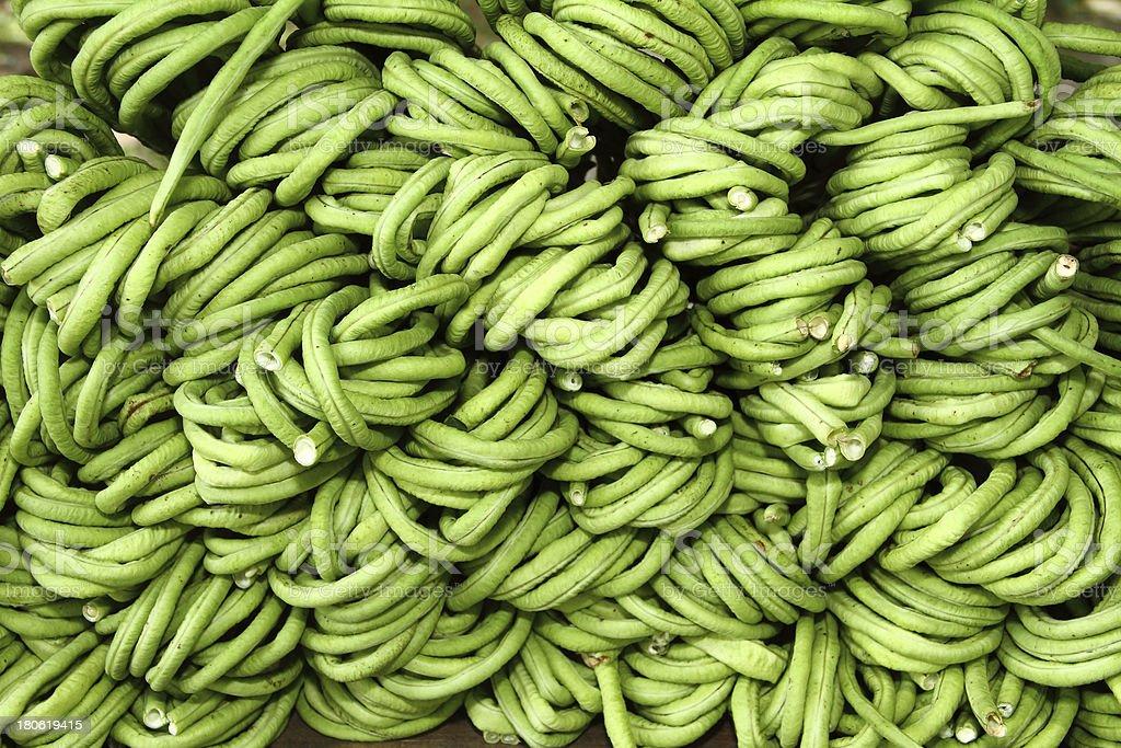 yard long bean royalty-free stock photo