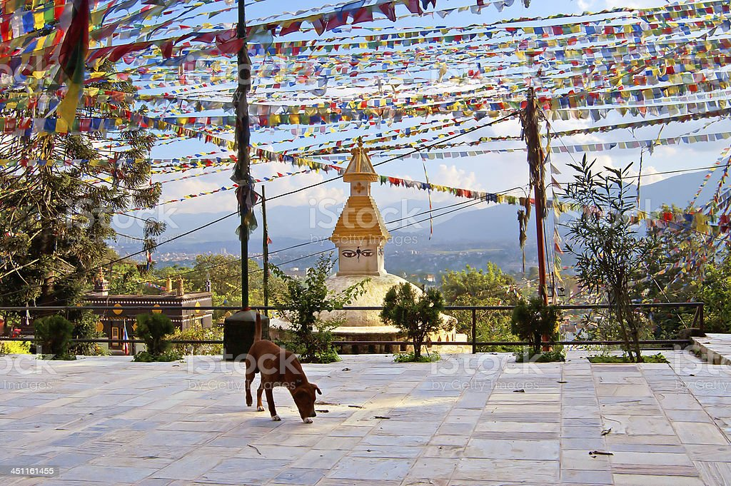 Yard of Swayambhunath (monkey temple) royalty-free stock photo