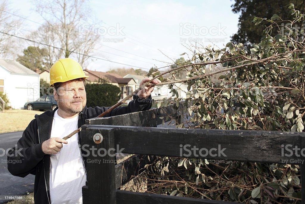 Yard Waste royalty-free stock photo