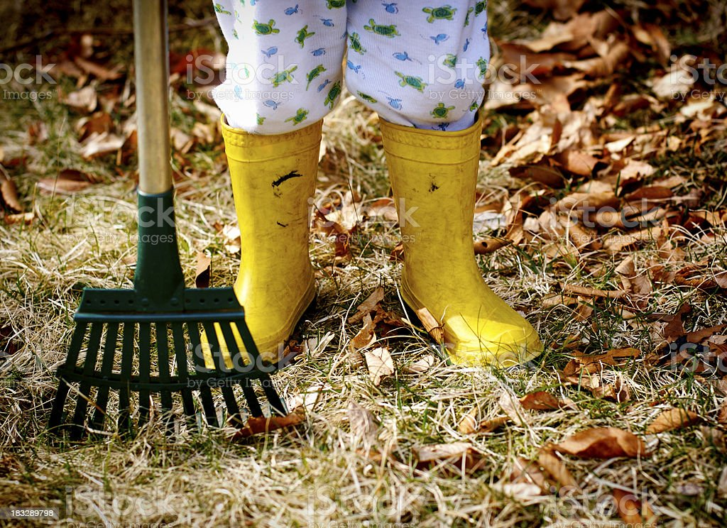 Yardwork royalty-free stock photo