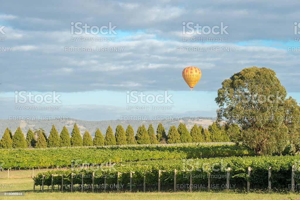 Yarra Valley, Australia stock photo
