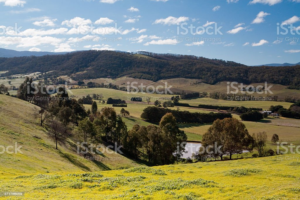 Yarra Valley View stock photo