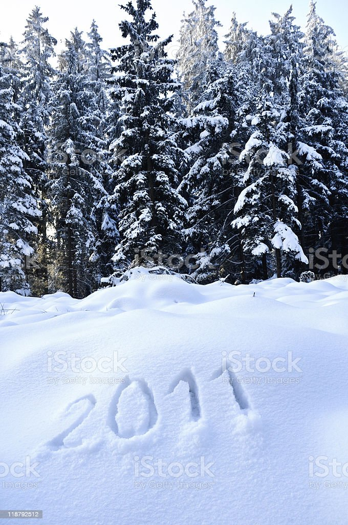 Year 2011 in a Winter Landscape royalty-free stock photo