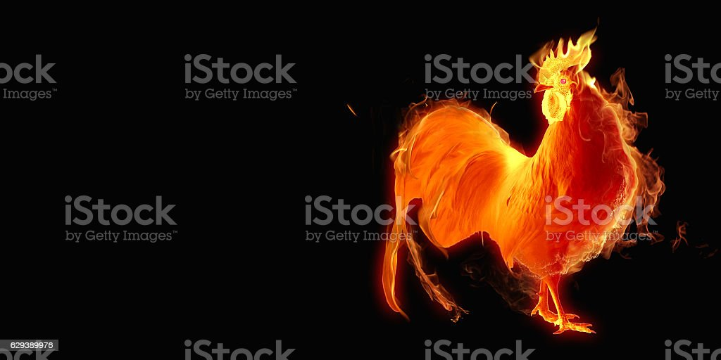 Year fire rooster. stock photo