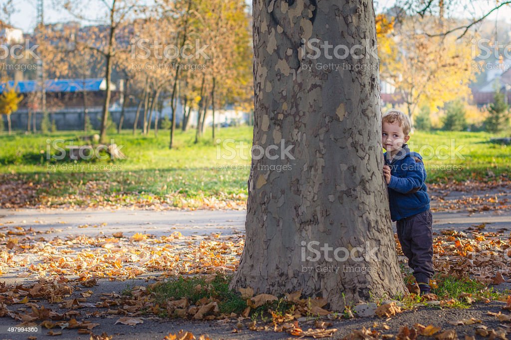 2 year old boy is hiding behind a tree stock photo