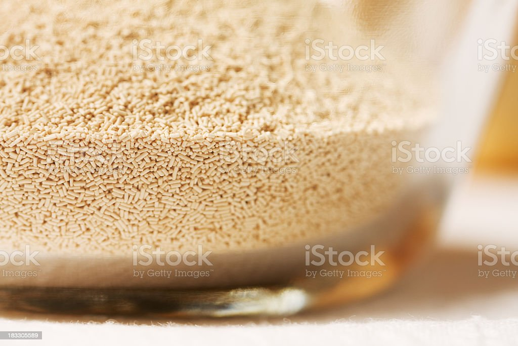 Yeast in a Clear Glass Bowl stock photo