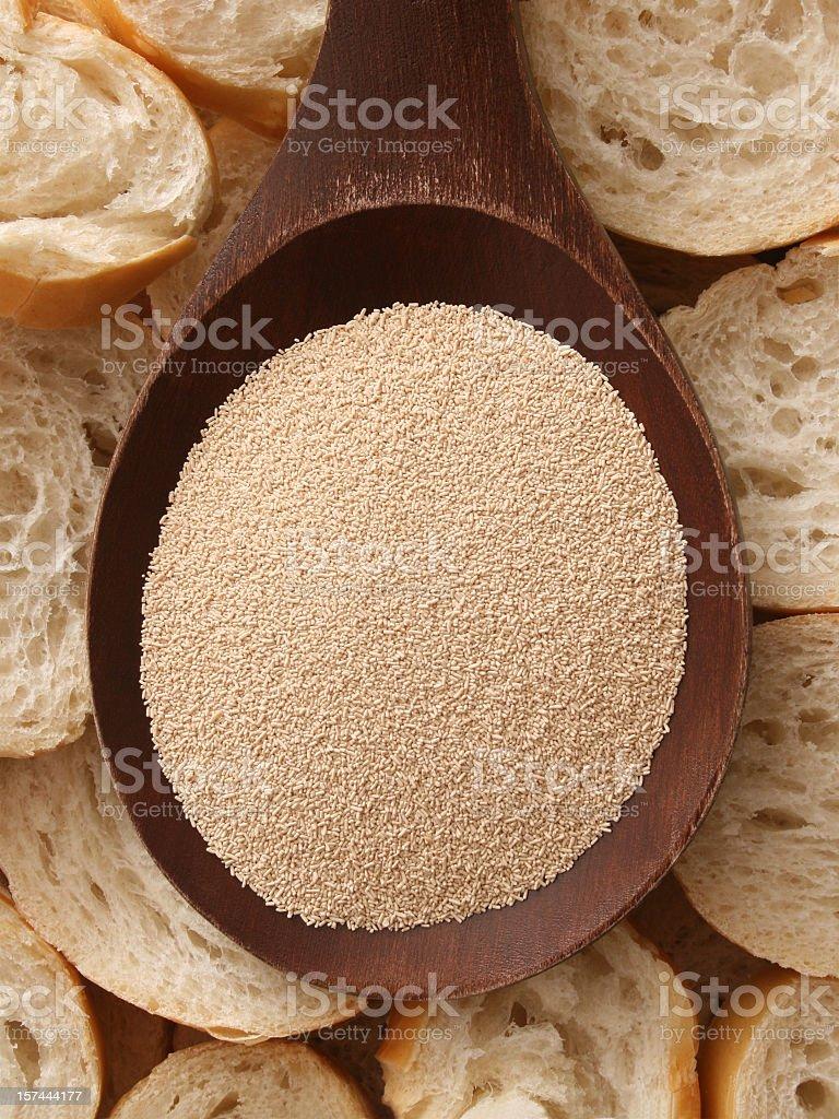 Yeast royalty-free stock photo