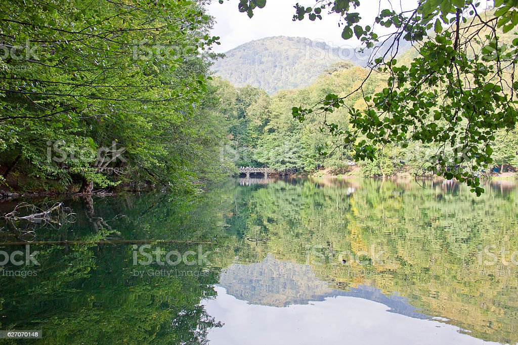 Yedigoller Lake and Forest stock photo