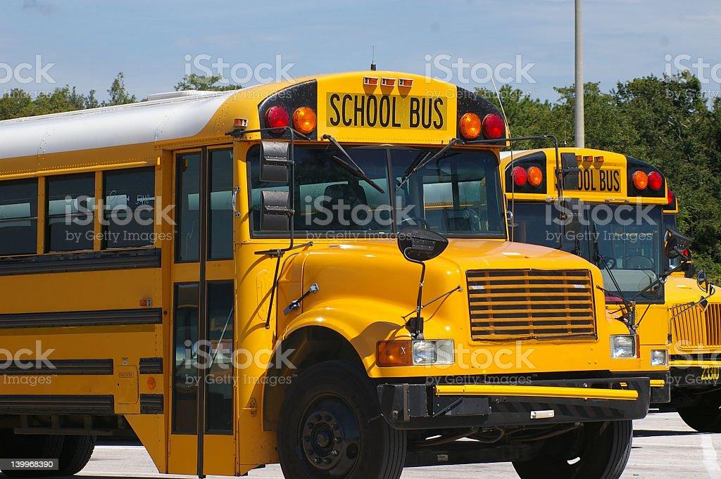 Autobuses escolares foto de stock libre de derechos