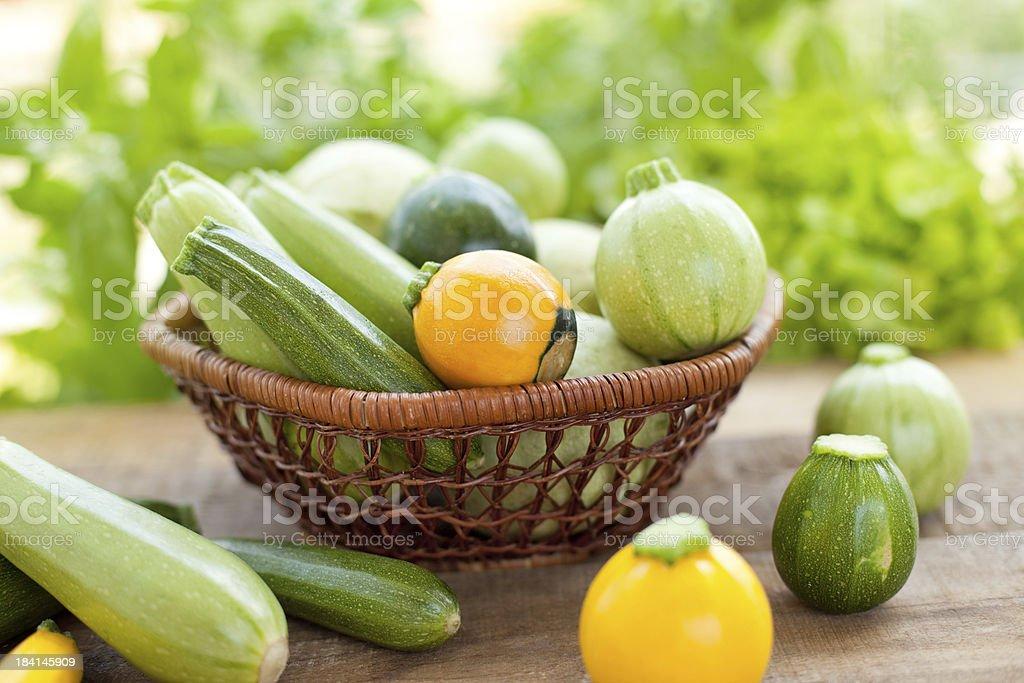 Yellow and green zucchini royalty-free stock photo