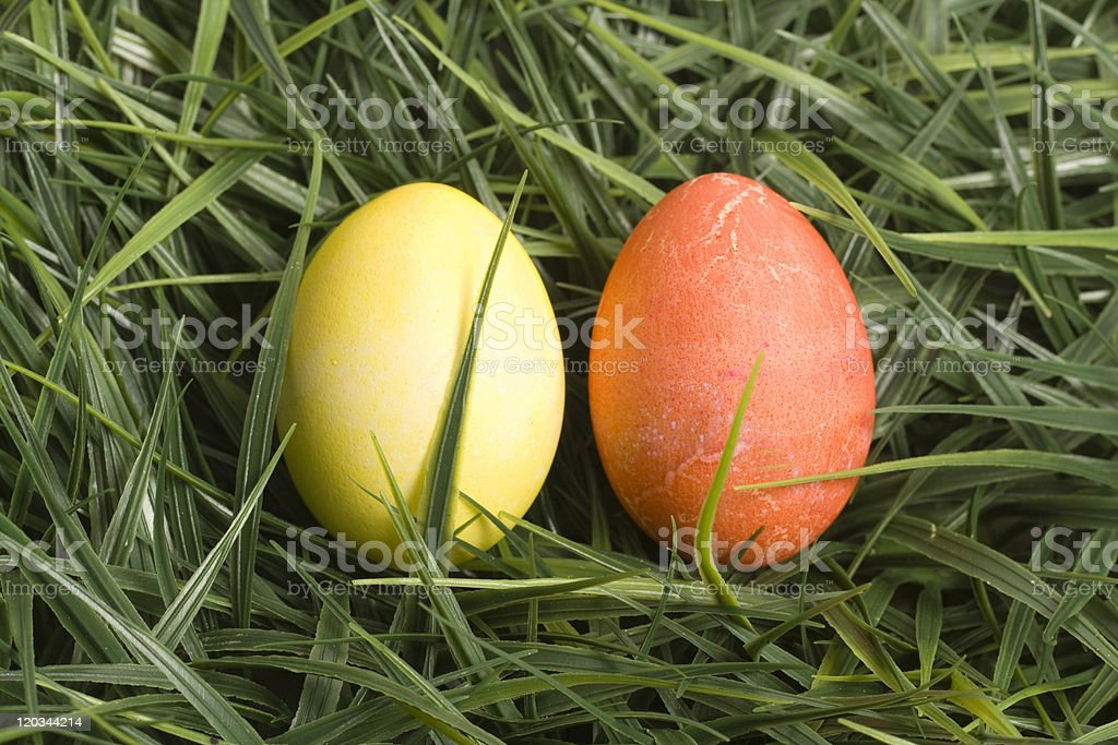 Yellow and Orange Easter Eggs in Grass stock photo