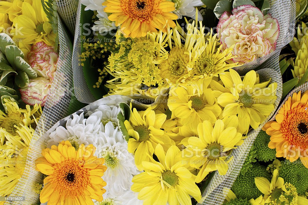 Yellow and orange flowers in a bucket royalty-free stock photo