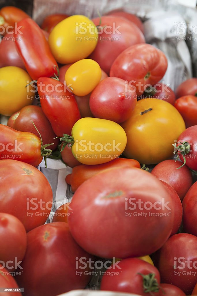 yellow and red tomatoes stock photo