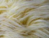 Yellow Artificial Fur Background