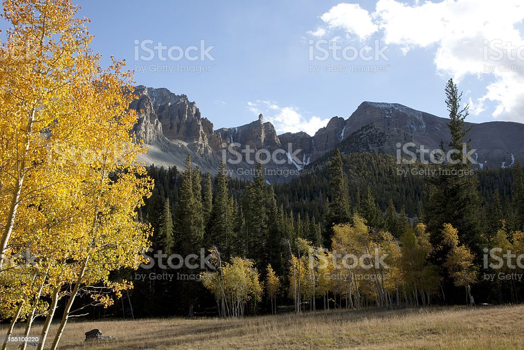 Yellow Aspen and Wheeler Peak Nevada's Great Basin National Park stock photo