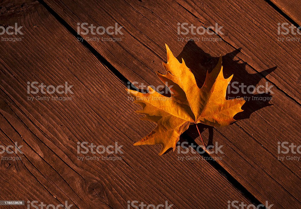 yellow autumn leaf old wooden background royalty-free stock photo