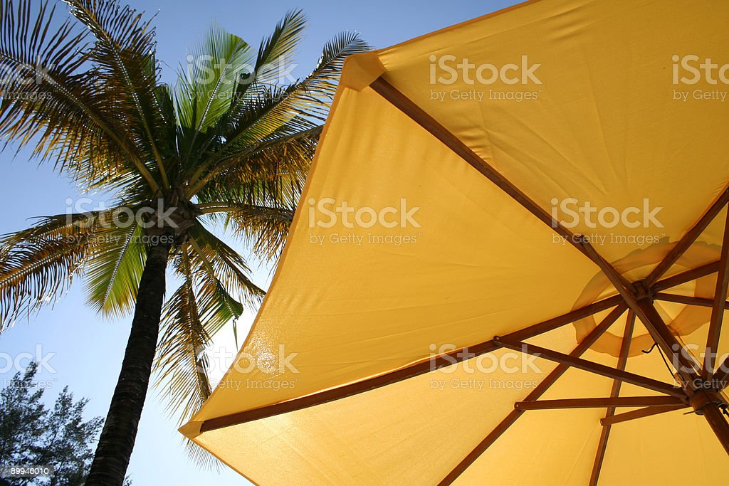 yellow beach umbrella palm tree philippines royalty-free stock photo