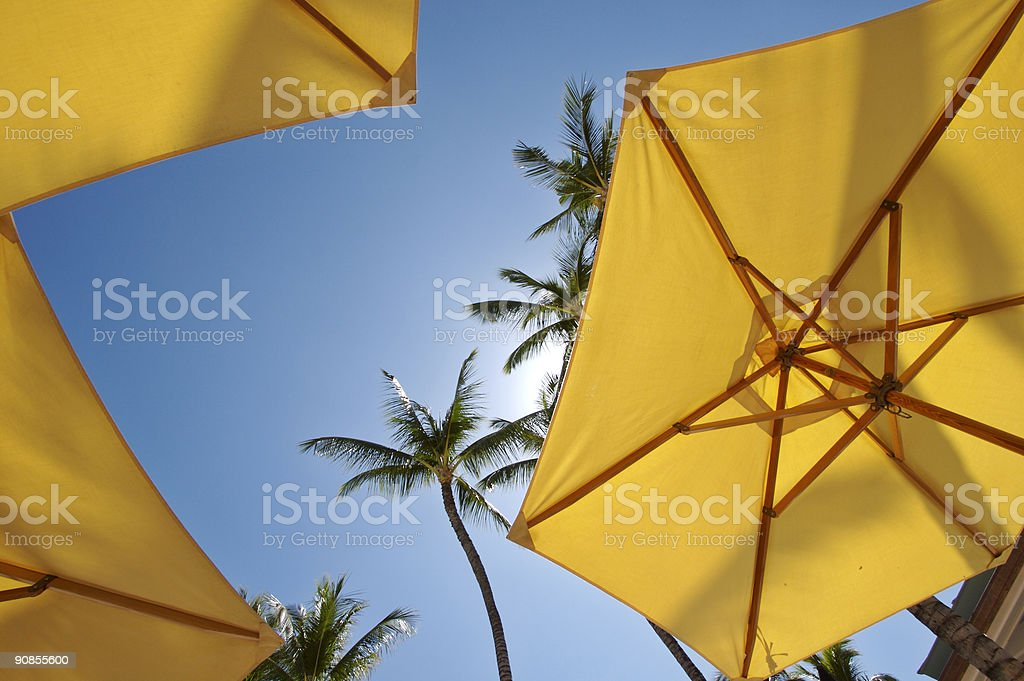 Yellow Beach Umbrellas and Palm Trees in the tropical sun royalty-free stock photo
