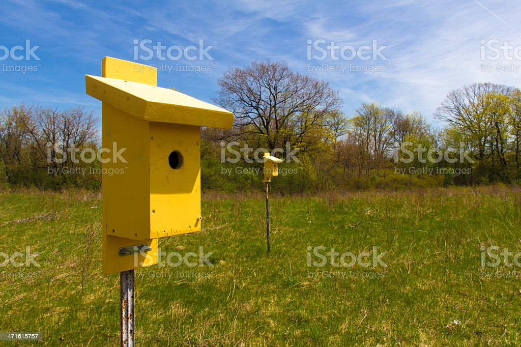 Yellow Birdhouses in Open Field royalty-free stock photo