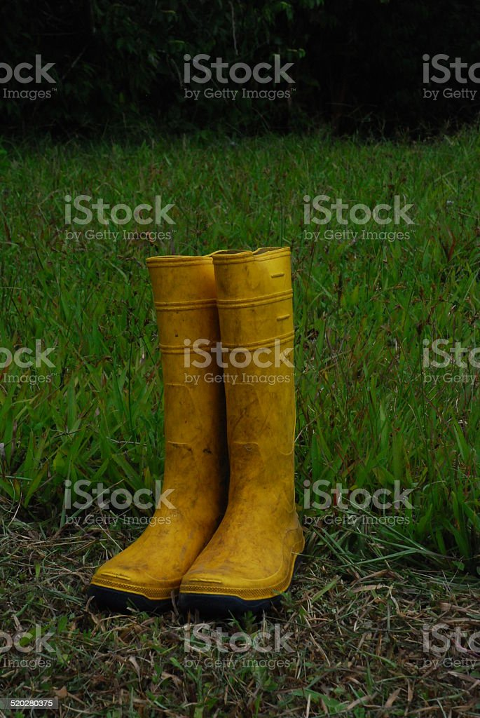 Yellow Boots Left to Dry stock photo