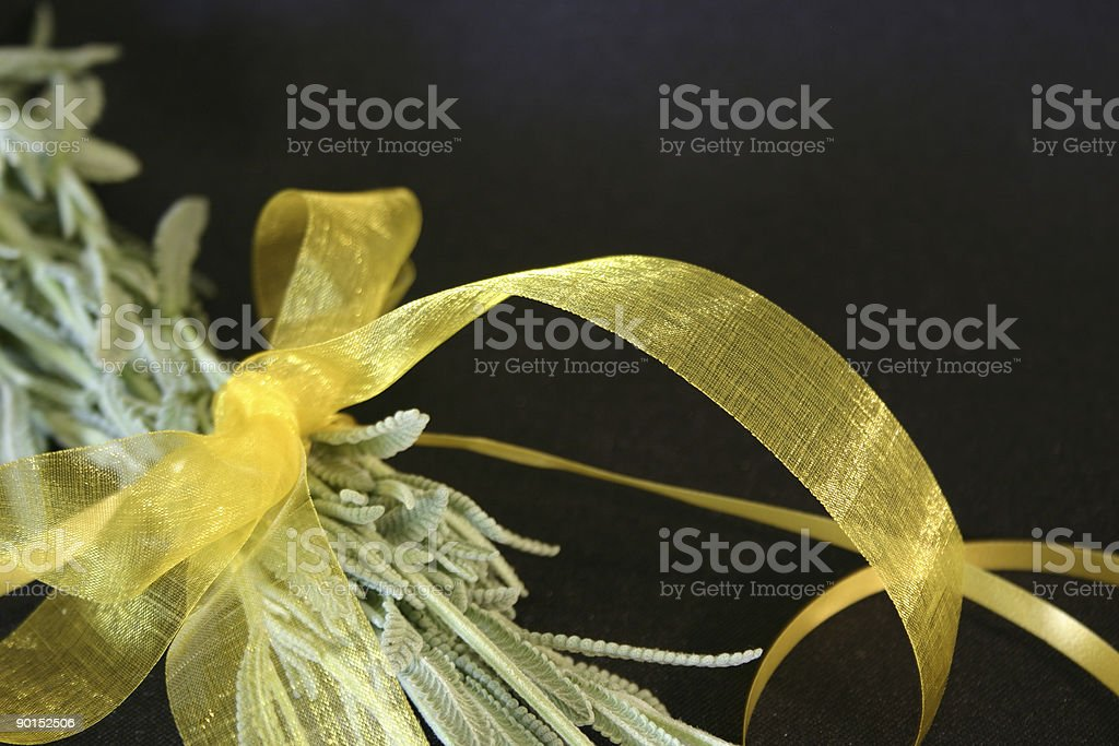 Yellow Bow Around Lavender Leaves stock photo