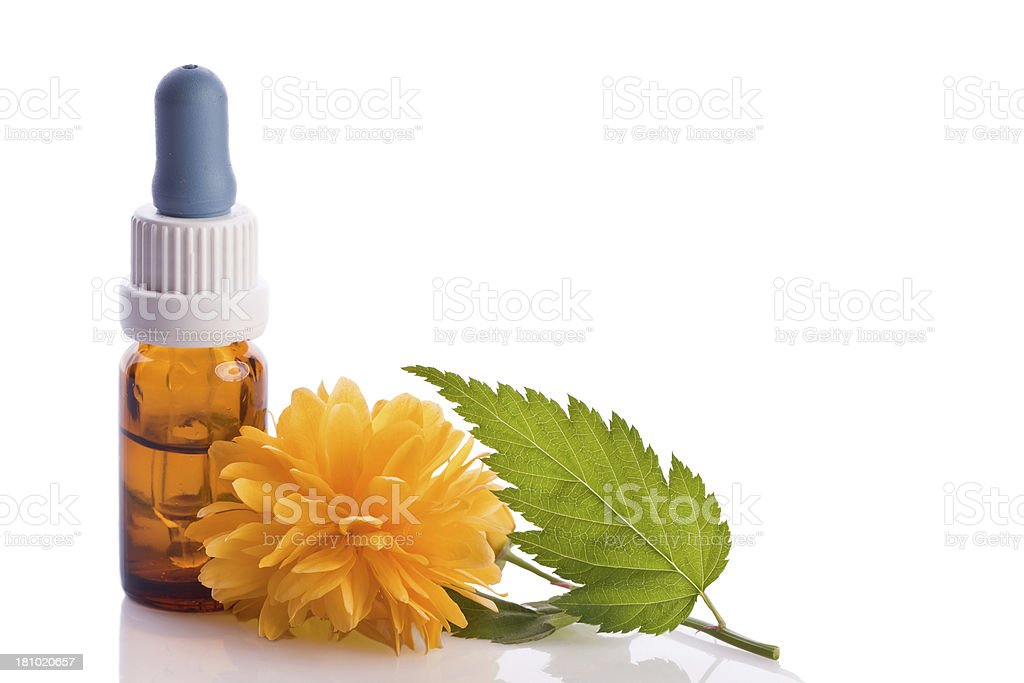 yellow buttercup homeopathic therapy royalty-free stock photo