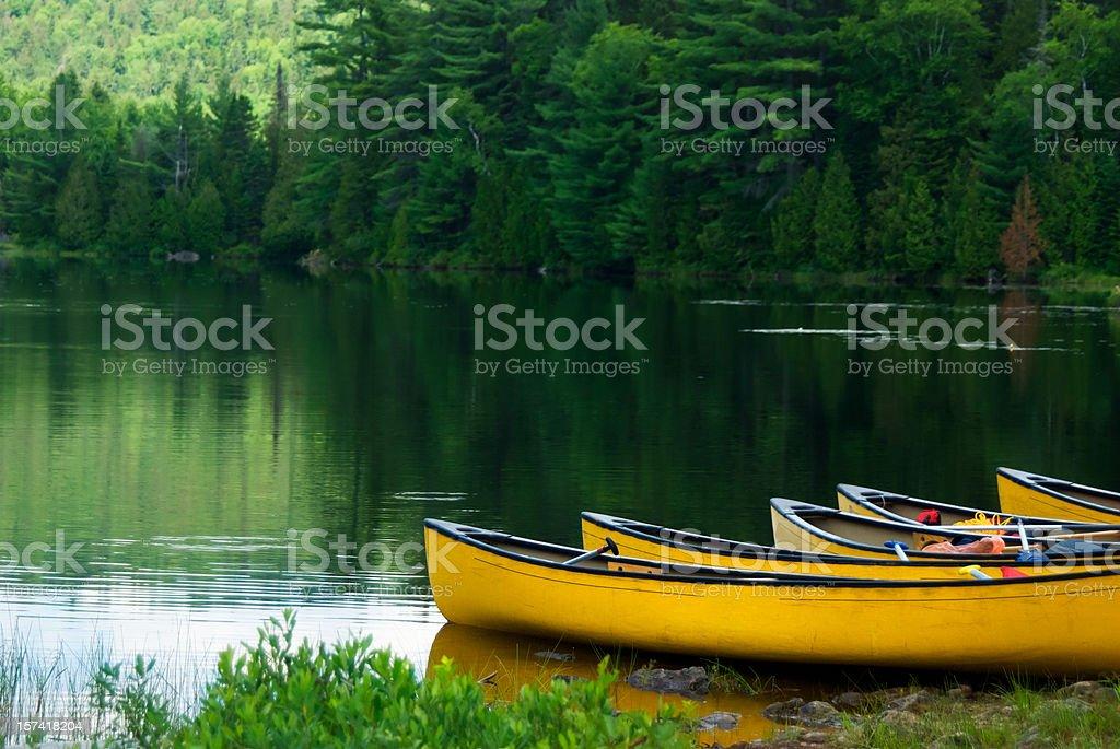 yellow canoes stock photo