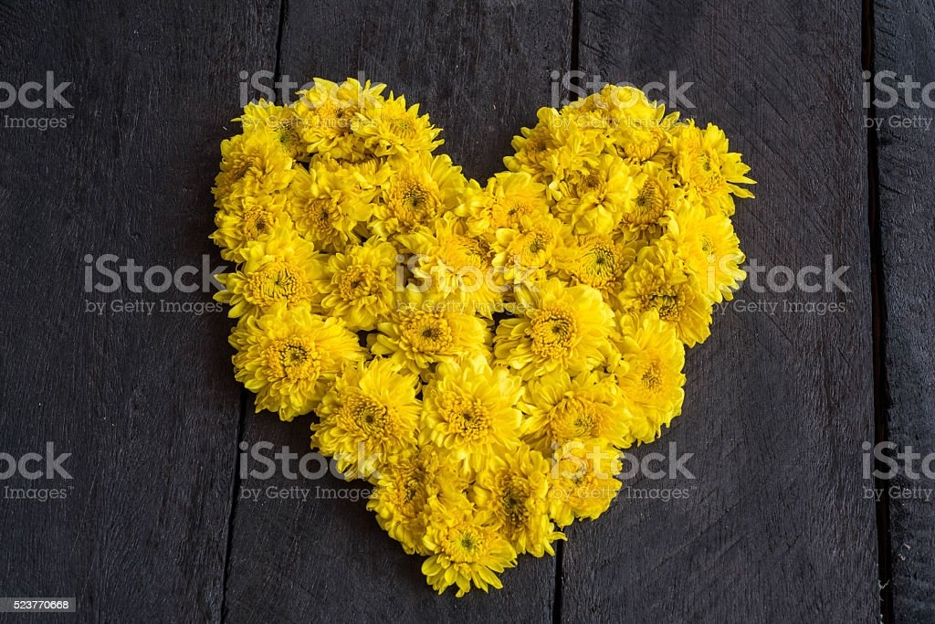 Yellow chrysanthemum flower  shaped like a heart on wood backgro stock photo