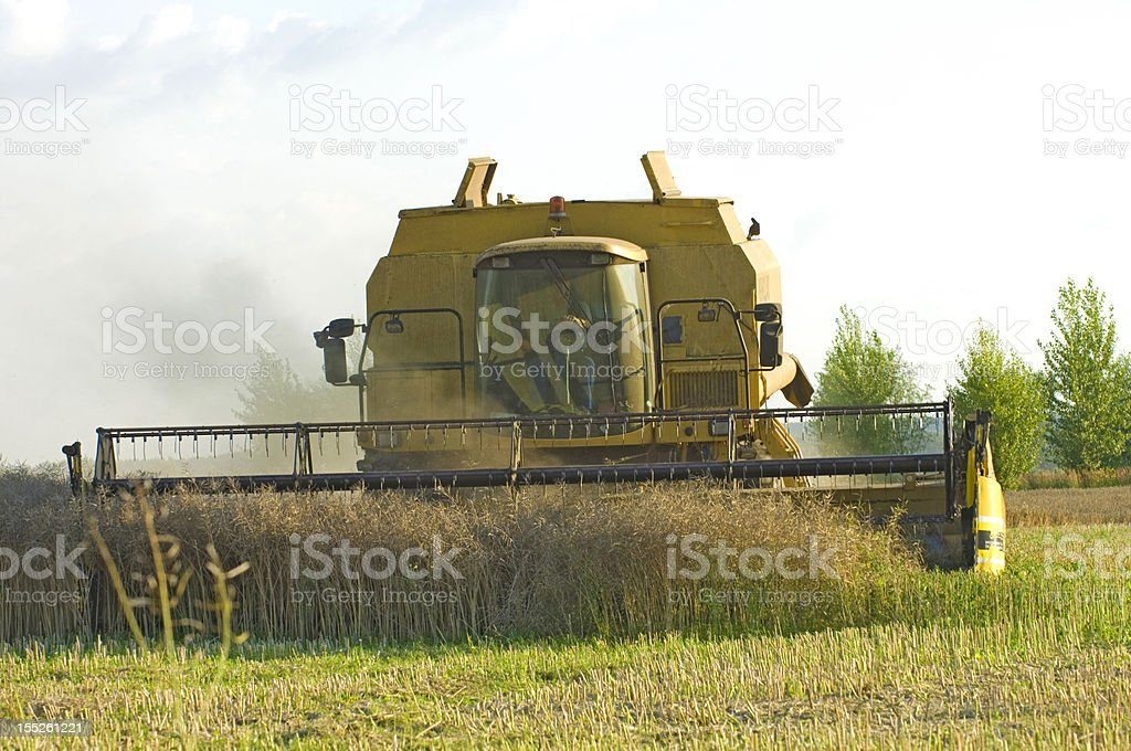 yellow combine harvester stock photo